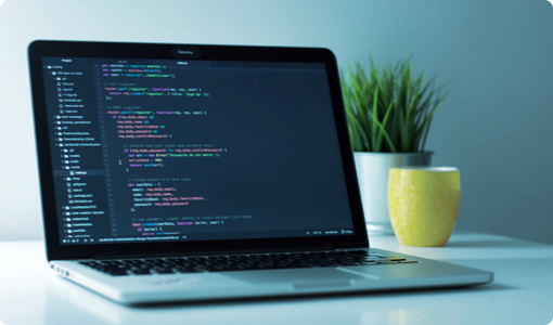 独创模型和解码技术.png
